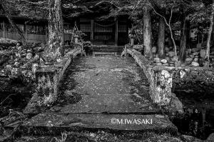 800takayamaiwasaki_img_0007222