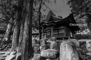 800takayamaiwasaki_img_004623