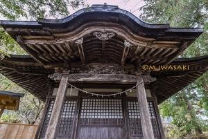 800takayamaiwasakiimg_00613