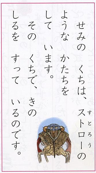 600kuminiwasaki1