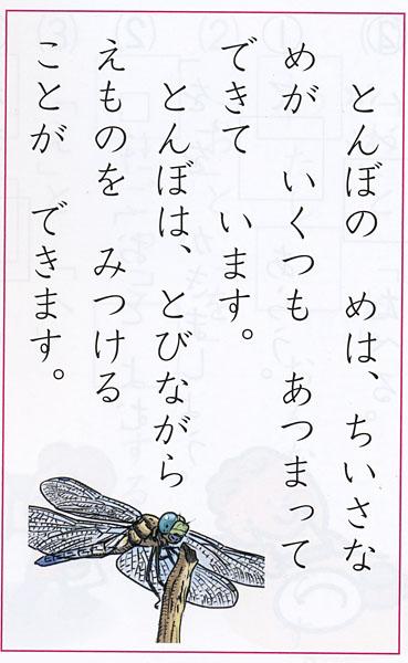 600kuminiwasaki2
