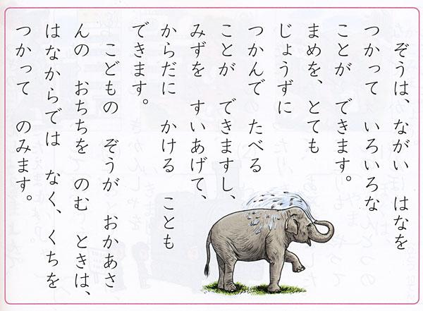 600kuminiwasaki3