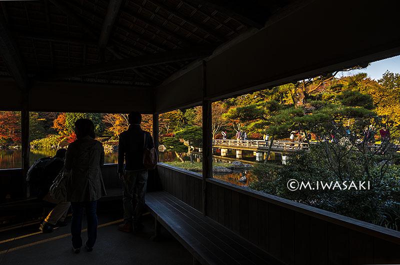 800syouwaiwasaki4127