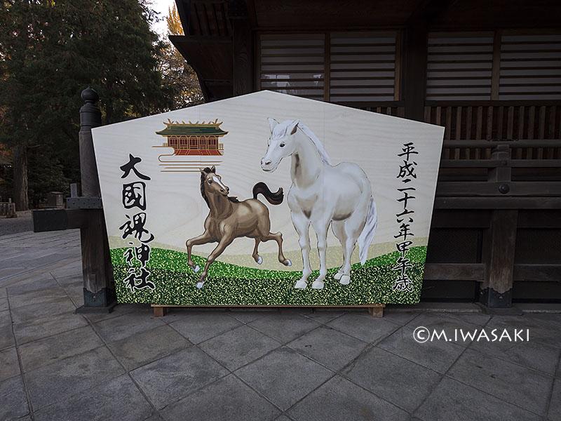 800hutyuiwasaki_pc050191