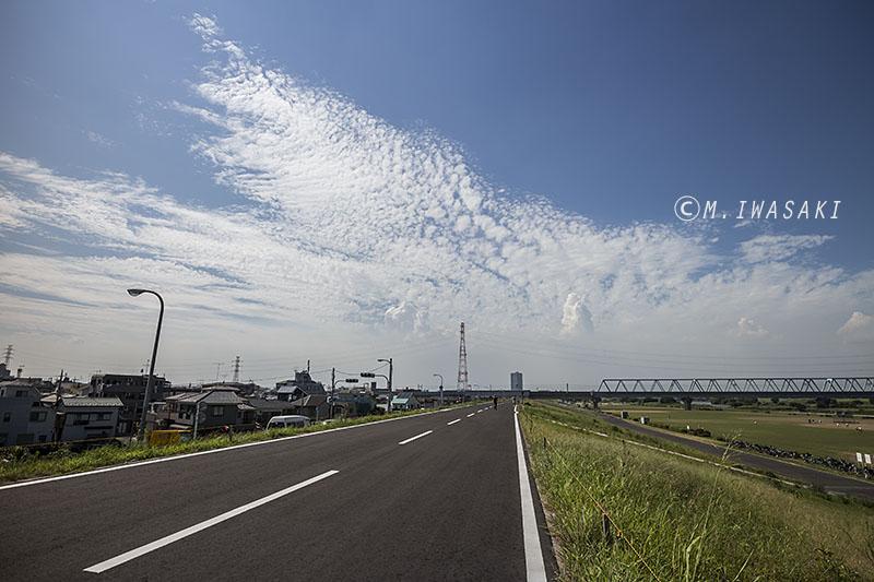 800edogawaiwasaki__mg_9292