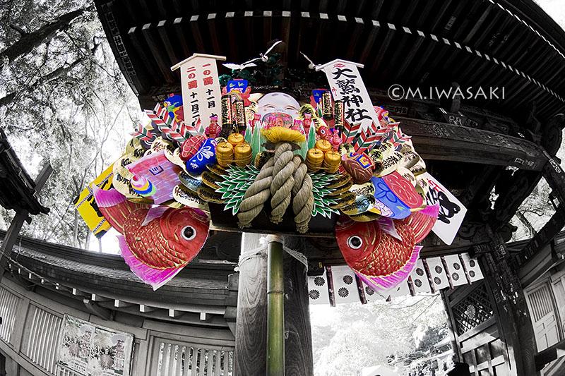 800torinoitiiwasaki2014_1