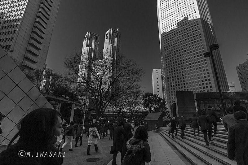 800yamagataiwasaki_img_796622