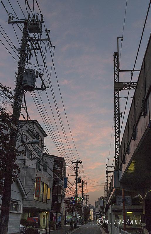 800hutyuiwasaki_img_3841