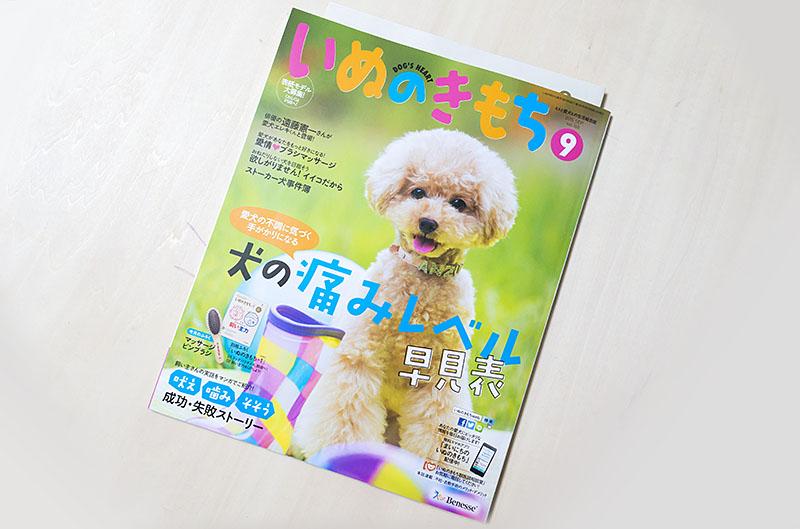 800inunokimotoiwasaki_dsc53942