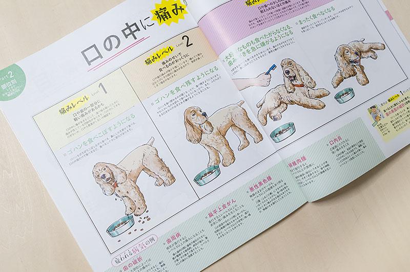 800inunokimotoiwasaki_dsc54042
