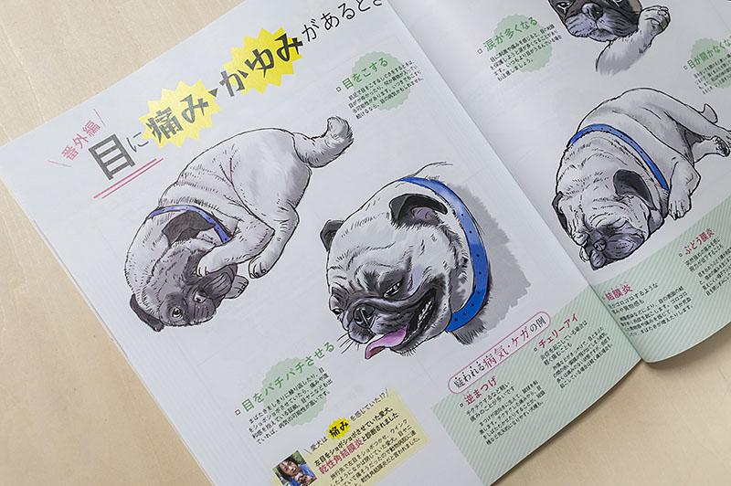 800inunokimotoiwasaki_dsc54082