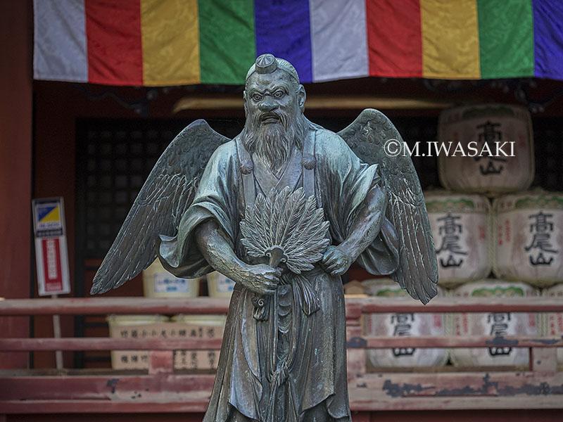 800takaosaniwasaki_p1050214