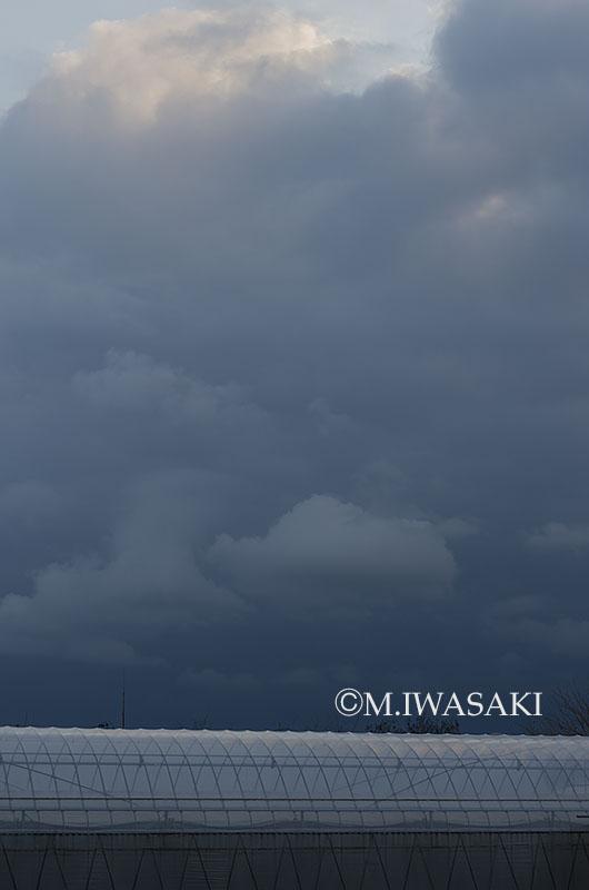 800tamagawaiwasaki_iimgp1723