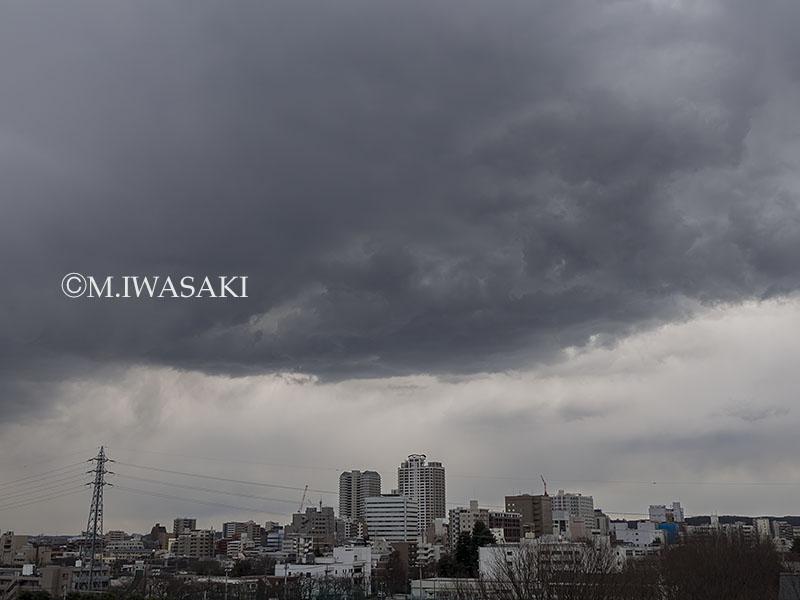 800kumoiwasaki_p3160044