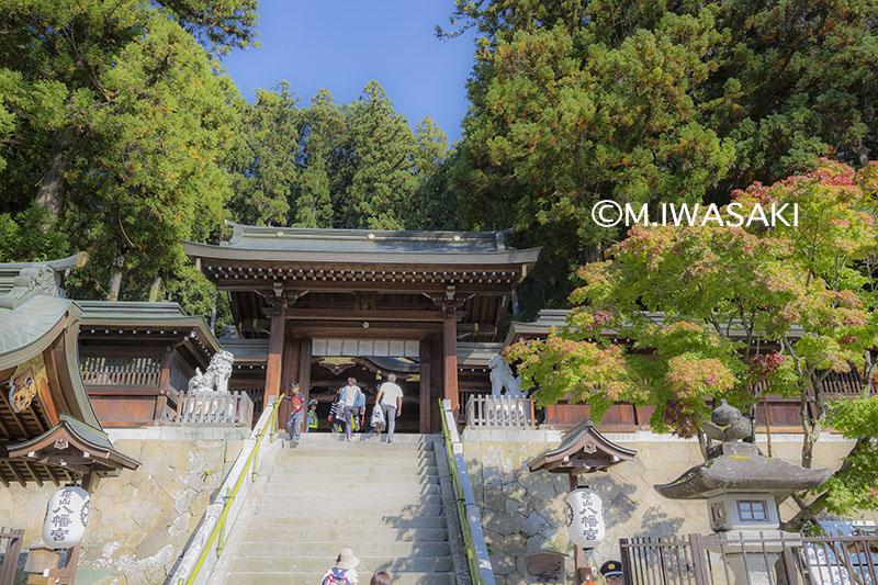 800takayamaiwasaki_img_1565