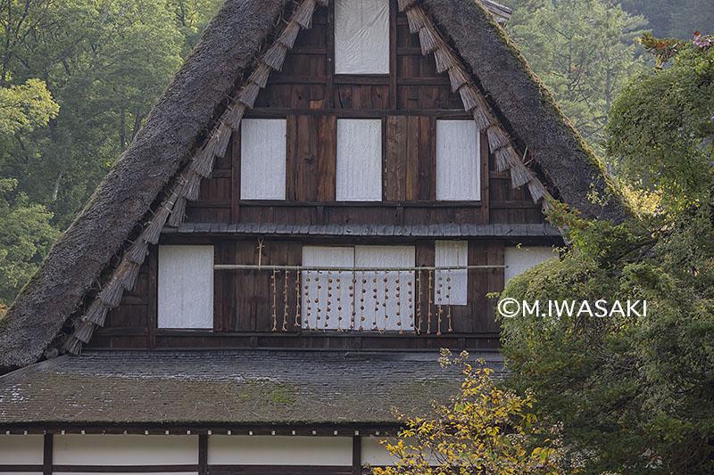 800takayamamaturiiwasaki__img_4726