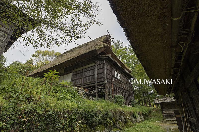 800takayamamaturiiwasaki_img_0786