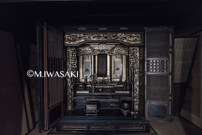 800takayamamaturiiwasaki_img_05193