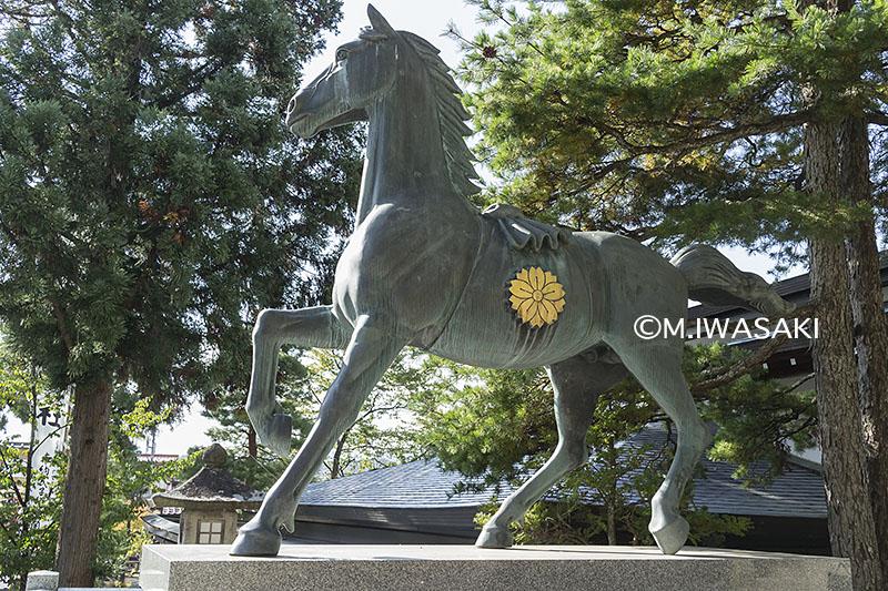 800takayamamaturiiwasaki_img_92151