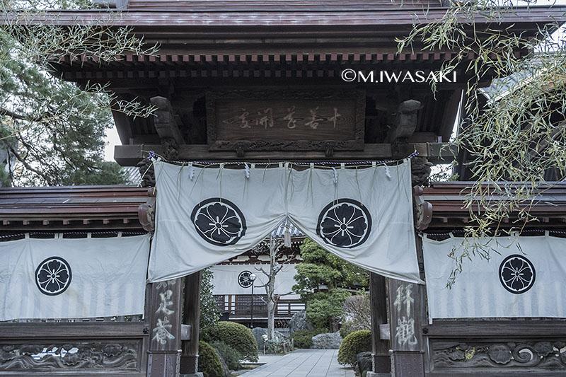 800takahatahudouiwasaki_iimgp6063